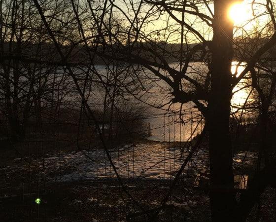 Winterlicher Sonnenuntergang am Mittelteich