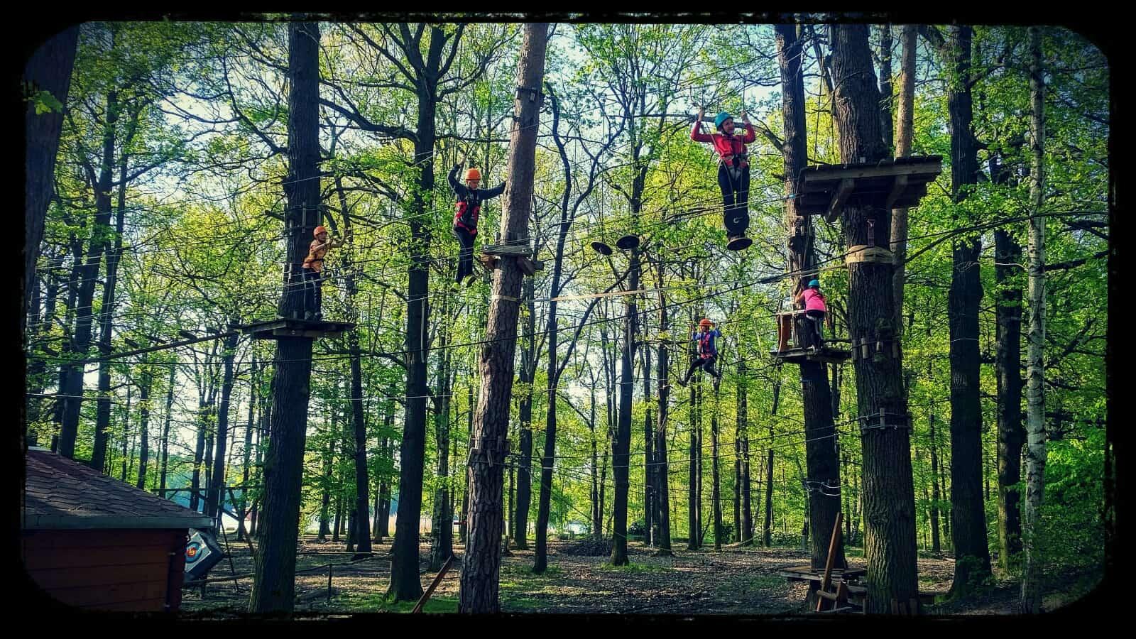 Bild von Hochseilgarten Moritzburg – After Work Klettern Veranstaltungsbereich