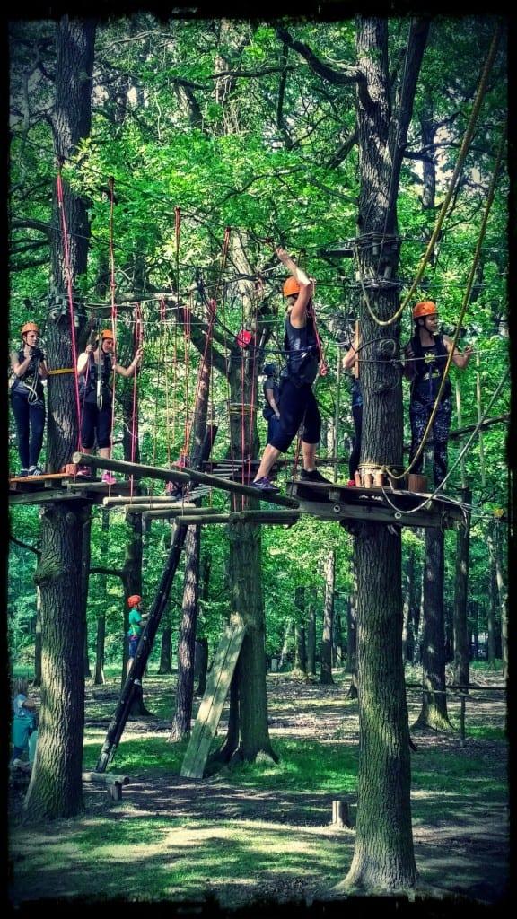 3-m-Parcours im Hochseilgarten Moritzburg mit 15 Elementen zum Ausprobieren, Entdecken und Spass haben