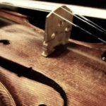 <H1>Irish Folk Musik am Mittelteich in Moritzburg</H1>